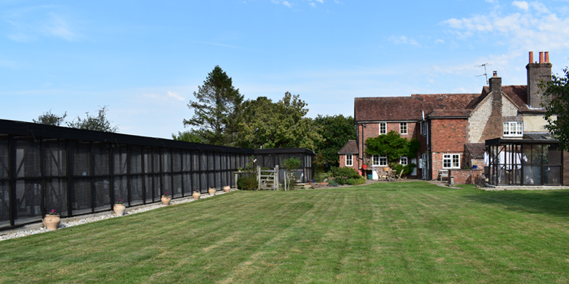 Arlington-Cattery-luxury-cattery-in-East-Sussex