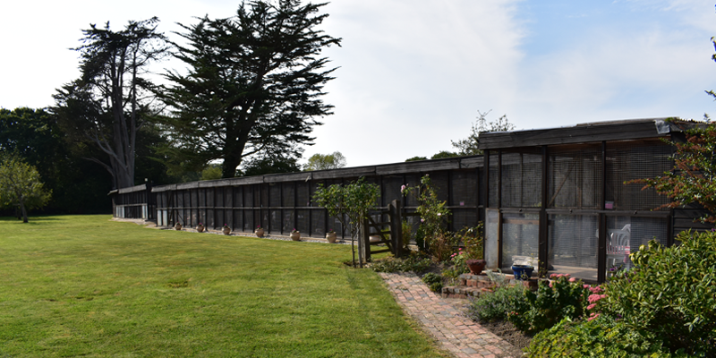 View-of-whole-of-luxury-cattery